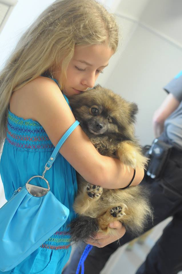 Happy Reunion between Dog and Girl