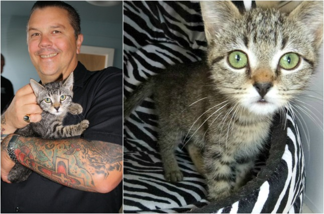 Matt Freeman of Rancid and Adina (Photo: Motley Zoo Animal Rescue)