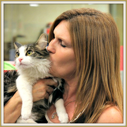 Roman gets plenty of loving while he waits at Lifeline for Pets in Monrovia, Calif.
