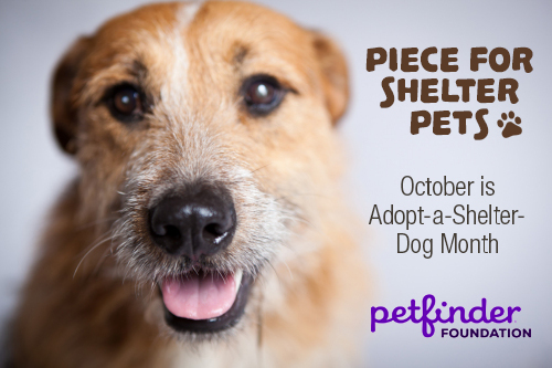 piece-for-shelter-pets-main-graphic
